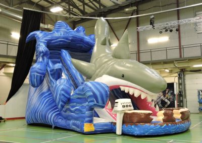 Mega Shark Slide